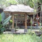 More on Ubud – Crispy Duck and Black Rice Pie