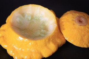 Patty Pan Squash recipe prep