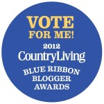 Vote-for-Me-Blogger-Logo