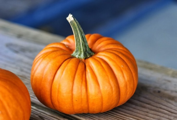 Pumpkin Recipes | Fake Food Free