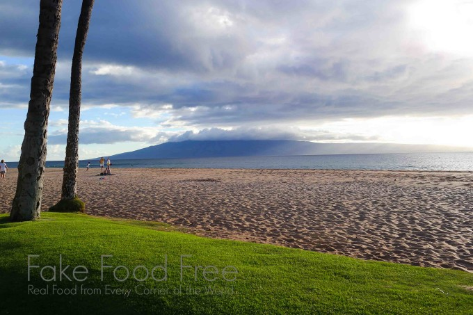 Food, Drinks and Beautiful Views on Maui | Travel recap at Fake Food Free