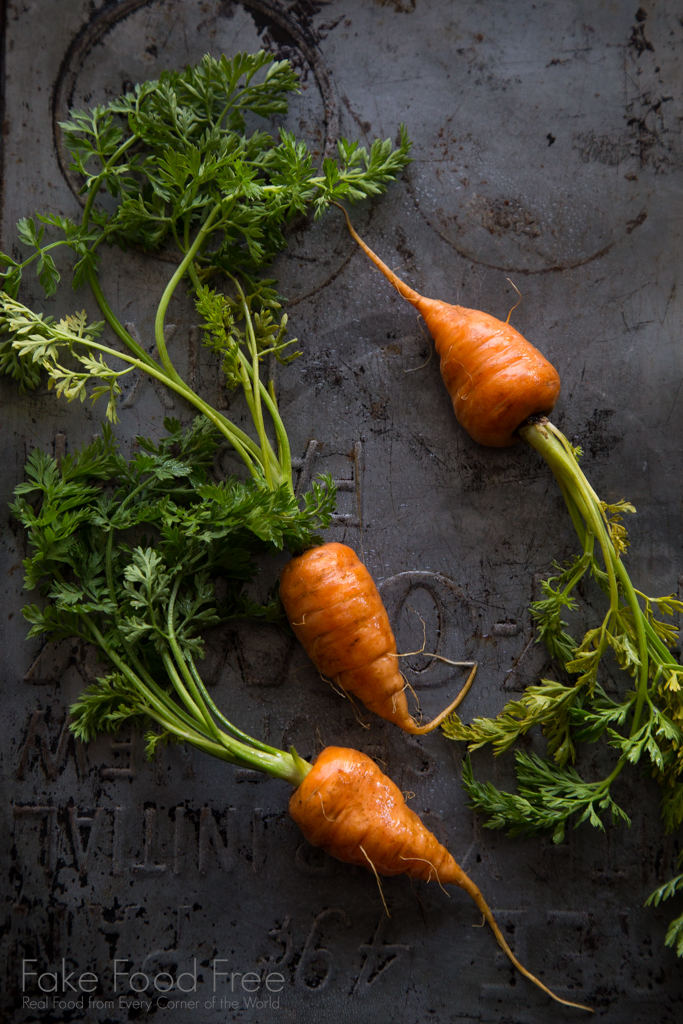 Garden Carrots | Lori Rice | Food Photography
